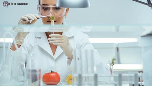 Gıda Mühendisi Nasıl Olunur? Gıda Mühendisi Maaşları