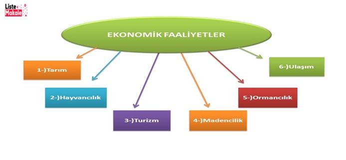 Türkiye'de Ekonomik Faaliyetler Nelerdir?